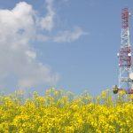 LTE-Ausbau: o2 droht Strafe wegen nicht erfüllter Auflagen